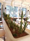 Case Study – Bermonds Locke, Aparthotel, Tower Bridge, London by Indoor Garden Design