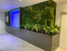Case Study – Artemis Interior Office Design by Green Team Interiors