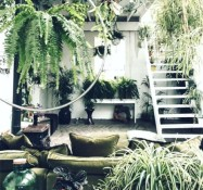 The success of Houseplant Appreciation Week