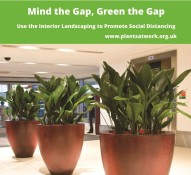 Mind the Gap, Green the Gap